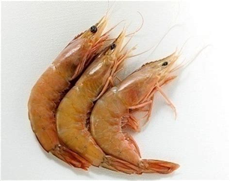 bake lobster tail step  step full hd