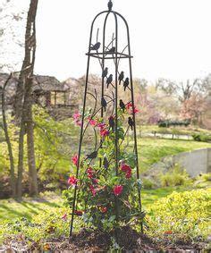 Garden Obelisk  Great Black Iron  Obelisks Pinterest