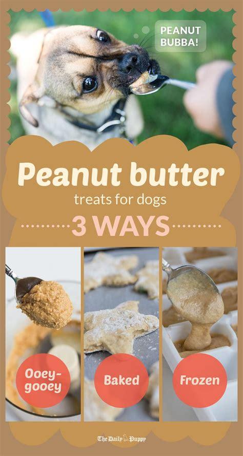 canine companions love peanut butter  dog safe human