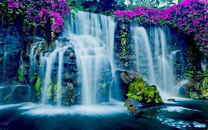 Waterfall Hawaii Water Flowers Tropical Desktop Pink