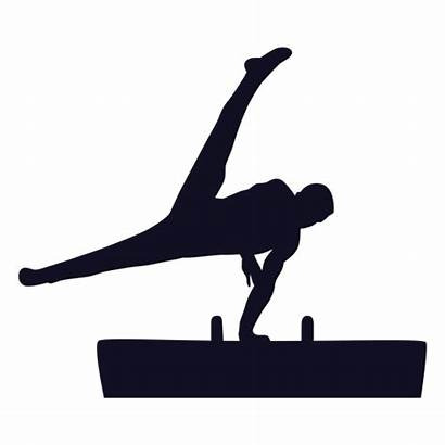 Silhouette Horse Gymnast Vaulting Exercise Caballo Silueta