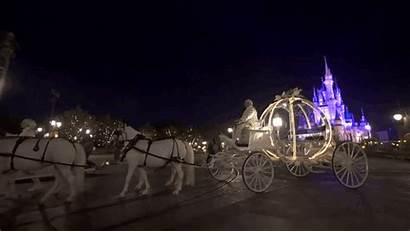 Disney Magic Kingdom Walt Night Park Married