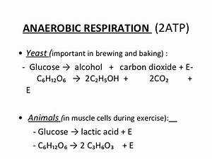 Overall Chemical Equation For Aerobic Cellular Respiration