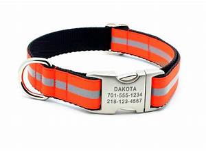 blaze orange reflective dog collar with personalized buckle
