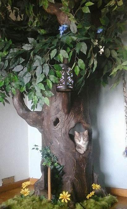 Cat Trees Tree Towers Fantasy Unique Luxury