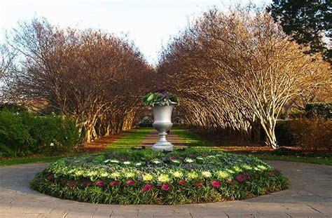 botanical gardens dallas 10 botanical gardens with wow factor winter