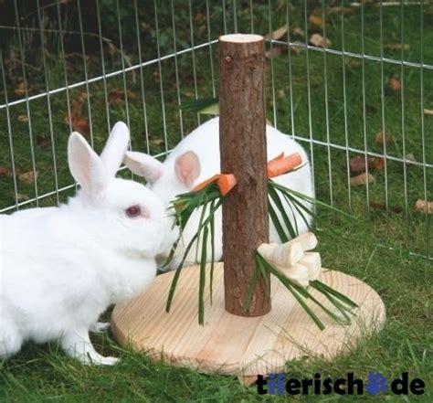 Auf Pinterestrhpinterestde Frisch Kaninchenspielzeug Selber Machen Anleitung Basteln U Tierspielzeugrhtierspielzeugwebsite Fleece Kaninchenspielzeug Selber Machen Anleitung Cuc Guinea Pig Jpg
