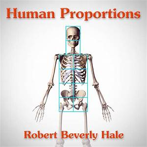 Body Measuring App Human Figure Proportions Cranial Units Robert Beverly