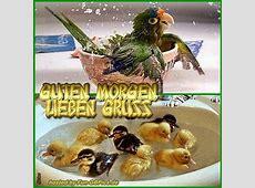Guten Morgen Gästebuch Bilder Grüsse Facebook BilderGB