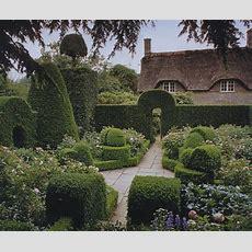 Hidcote Manor Garden  Distinct Vision