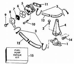 Evinrude Fuel Pump Parts For 1989 3hp E3brcec Outboard Motor
