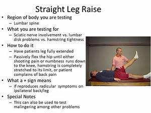 Low Back Pain Lab. - ppt video online download