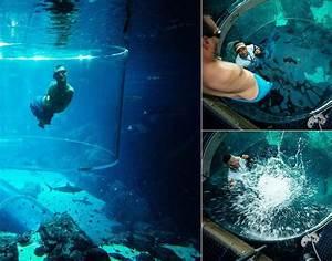 Anyone else fancy a swim ? — with Dusica Spasic, nick ...