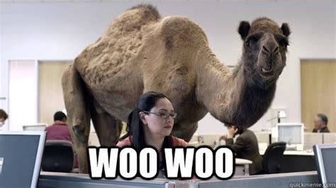 Woo Girls Meme - happy hump day now get to humpin hump day quickmeme