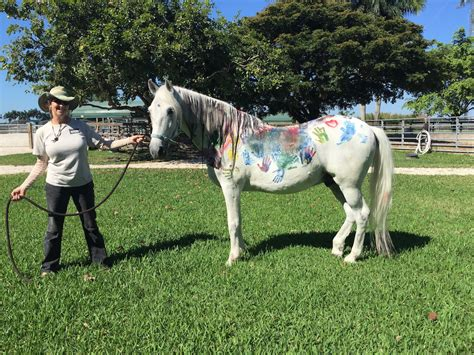 honor school students learn  horses hands