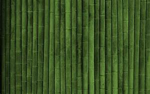 bamboo wallpaper for walls 2017