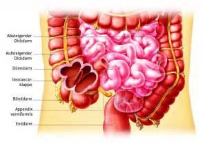 sehschwäche symptome appendix gesundheits lexikon jameda