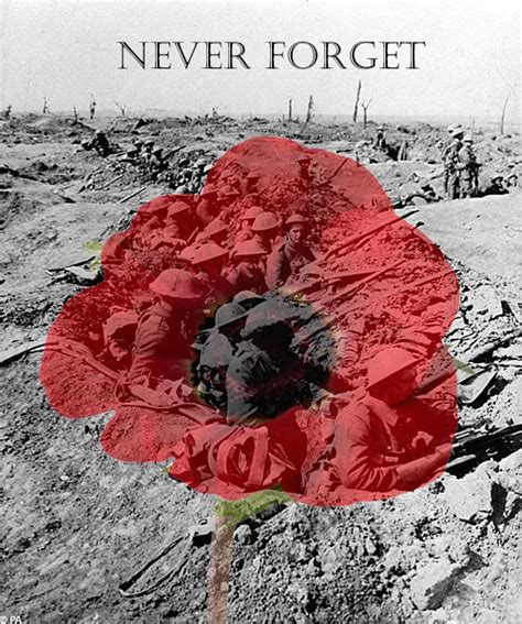 images poppies remembrance remembrance day poppy day by daliscar on deviantart