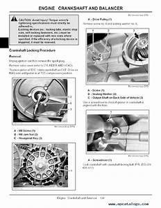 Trail Buck 650 Ext Service Manual