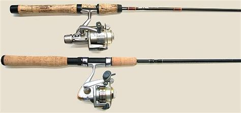 fishing rods reels learning   fish