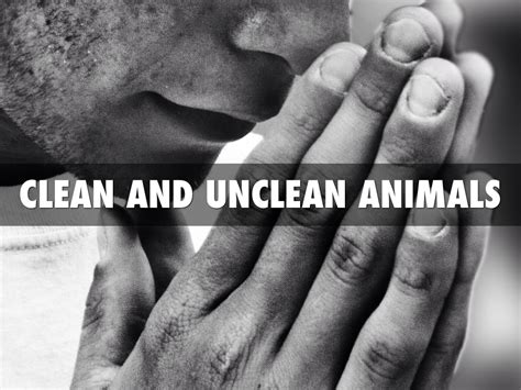unclean clean animals