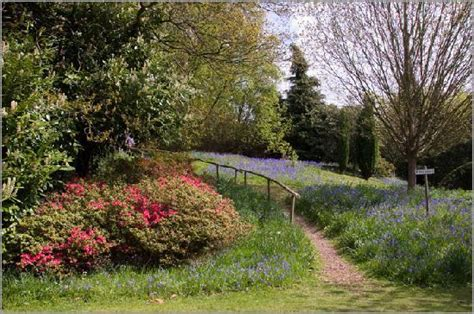 river hill gardens sevenoaks events what s on in and around sevenoaks for