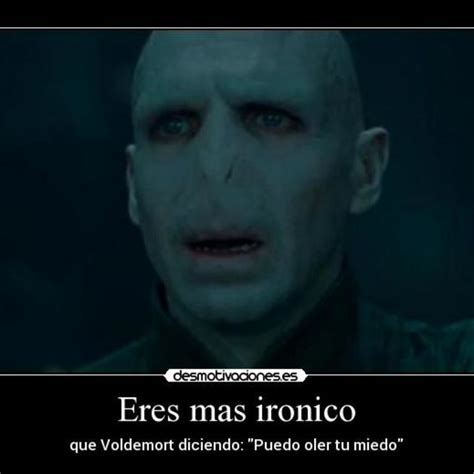 Voldemort Memes - the 25 best voldemort meme ideas on pinterest harry potter voldemort harry potter jokes and