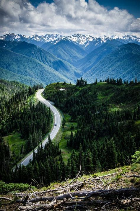 25 Best Ideas About Hurricane Ridge On Pinterest