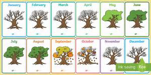 Months Of The Year On Oak Trees Display Posters