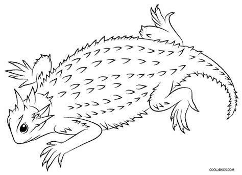 printable lizard coloring pages  kids coolbkids