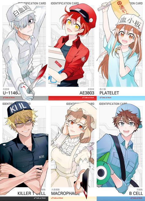 anime hataraku saibou personajes