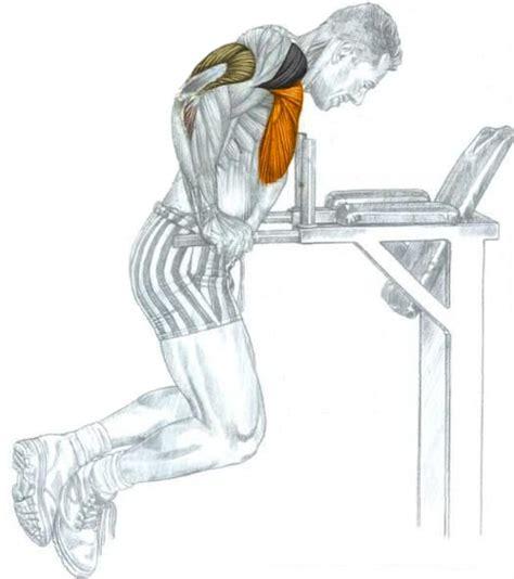 Dips Chaise Pectoraux by Dips L Exercice De Musculation 233 Pique Pour De Gros Pecs
