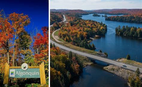 cuisine ottawa couleurs d 39 automne dans le parc provincial algonquin