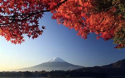Maple Autumn Fuji Mount Japan Wallpapers