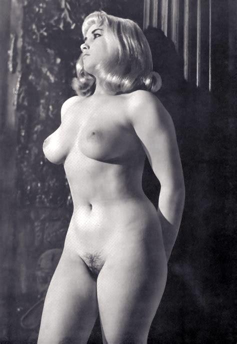 Vintage Vixens XNXX Adult Forum