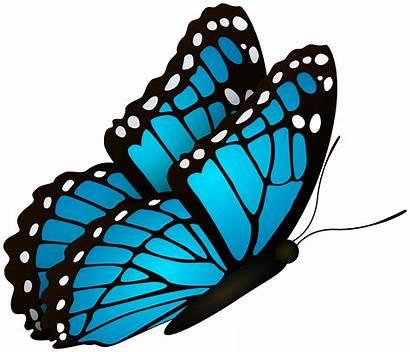 Butterfly Flying Clipart Purple Transparent Butterflies Silhouette