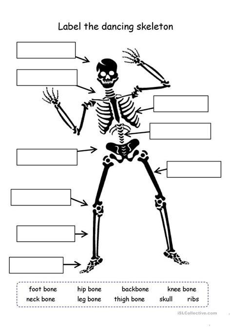 label  skeleton worksheet  esl printable