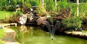 installer un bassin dornement au jardin With bassin d ornement jardin