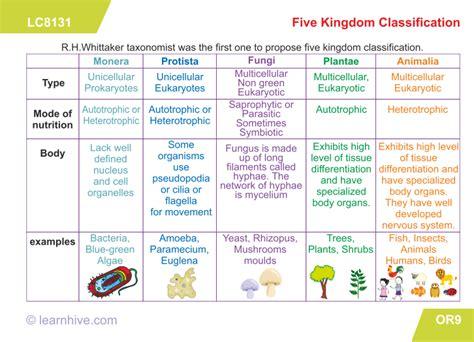 Kingdom Worksheet Biology Kingdom Classification Worksheet Confortable Biology Worksheets