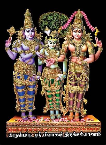 Meenakshi Madurai Temple Chithirai Thiruvizha Goddess Sundareswarar