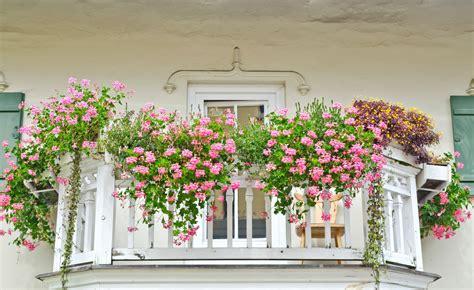 Blumenkästen  Inspirationen & Tipps Von 7roomz