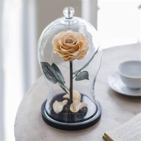 ewige im glas kaufen 171 premium x 187 chagner im glas notta