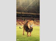 Turk Telekom Arena Fc Galatasaray 1366x768 Wallpaper