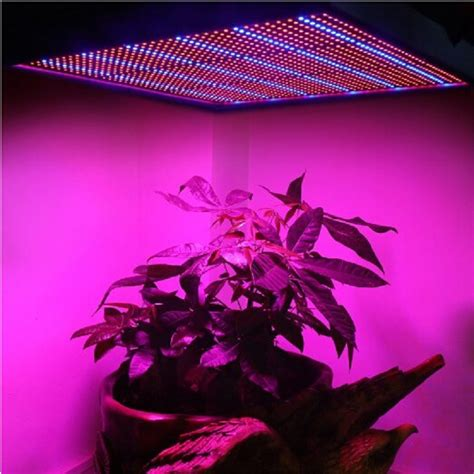 Plant Lighting Hydroponics by 1365pcs Smd 120w 1131red 234blue Led Grow Lights