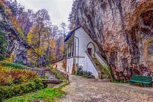 Free, Images, Landscape, Tree, Nature, Forest, Branch, Sky, House, Leaf, Home, Village, Spring