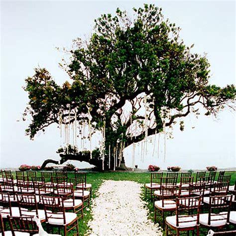 Modern Wedding Invitation Beautiful Outdoor Wedding