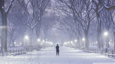 central park  york city winter background  hd