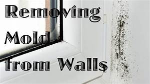 Removing mold from walls youtube for How to get rid of mold in the bathroom walls