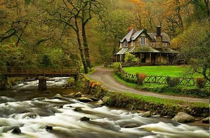 Forest Nature River Landscape Road Trees Bridge