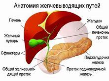 диета при воспалительных процессах почках
